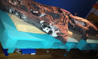 palettenbetten archives palettenbett und palettenm bel palettenbett und palettenm bel. Black Bedroom Furniture Sets. Home Design Ideas