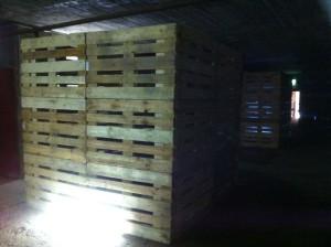 Video-Installation mit Europaletten im Hochbunker - Rundlauf Bochum