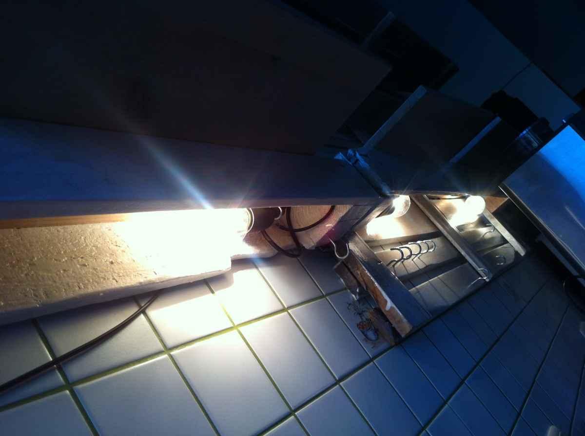 küchenregal aus paletten - palettenregal 2 - palettenbett und ... - Küchenregal Mit Beleuchtung