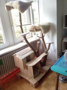 Katzenkratzbaum, gepolsterte Liegewiesen