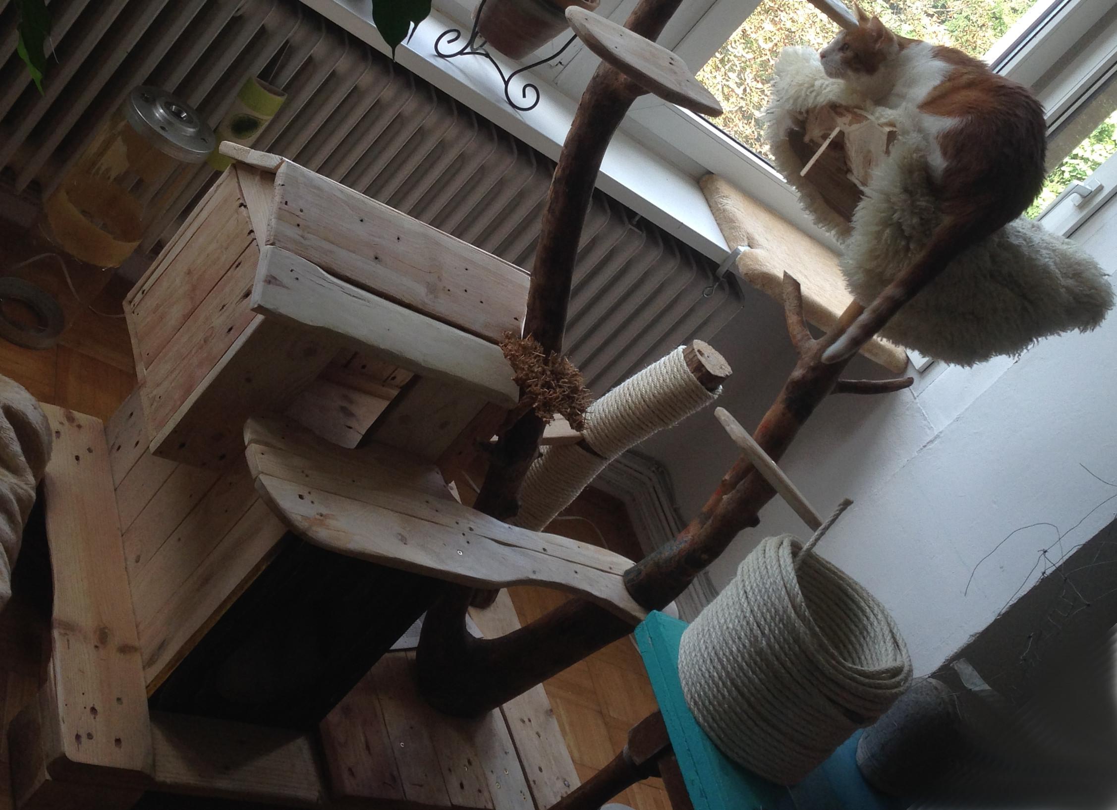 katzenkratzbaum und katzenh tte aus palettenholz borkenk fer sten palettenbett und. Black Bedroom Furniture Sets. Home Design Ideas