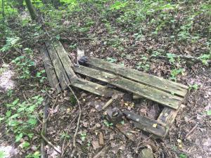 Schnellkompostierung: viel Bodenkontakt, Feuchtigkeit, wenig Sonne