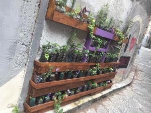 Urban Gardening: Paletten-Wandbeete mit Plastikflaschentöpfen
